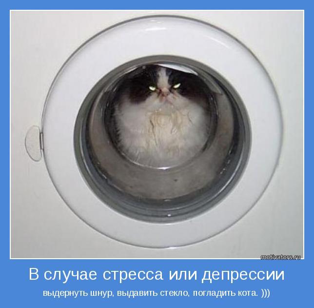 выдернуть шнур, выдавить стекло, погладить кота. )))