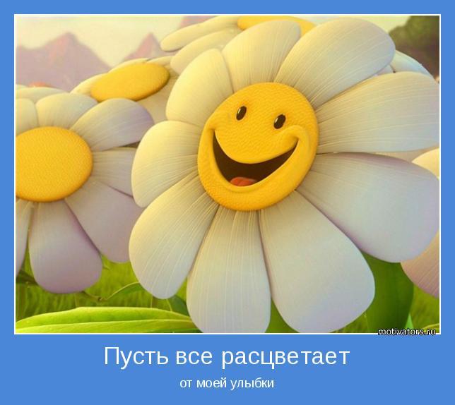 от моей улыбки