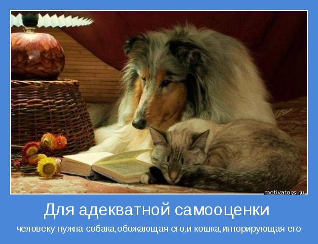 http://motivators.ru/sites/default/files/imagecache/main-motivator/motivator-55751.jpg
