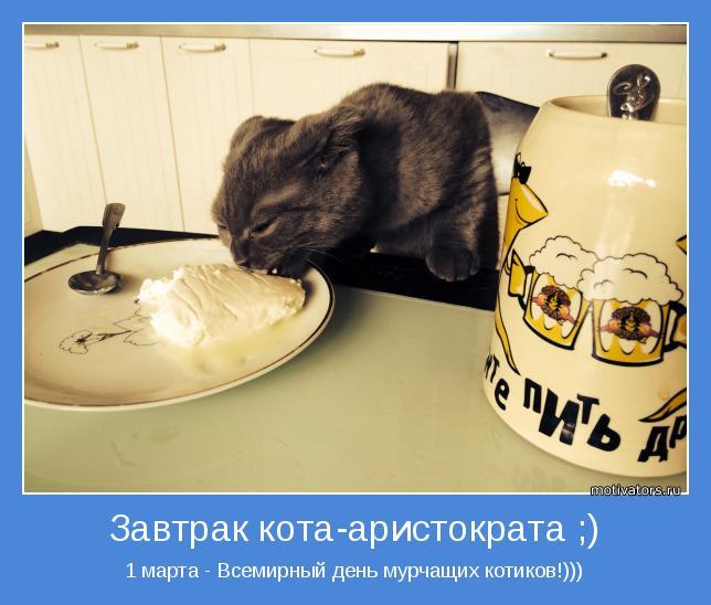 1 марта - Всемирный день мурчащих котиков!)))