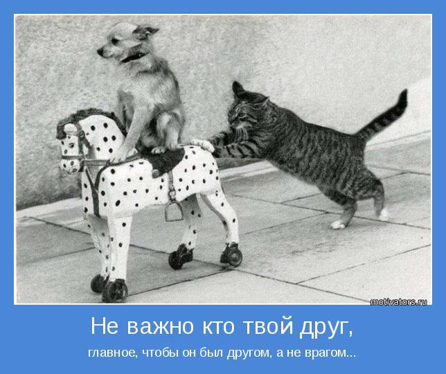 главное, чтобы он был другом, а не врагом...