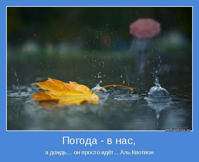 а дождь… он просто идёт... Аль Квотион