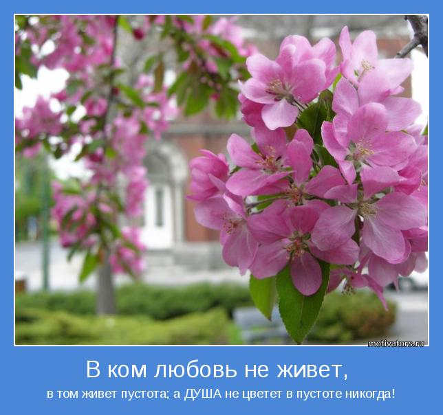 в том живет пустота; а ДУША не цветет в пустоте никогда!
