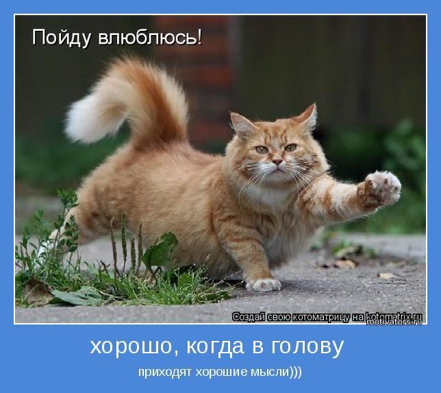 приходят хорошие мысли)))