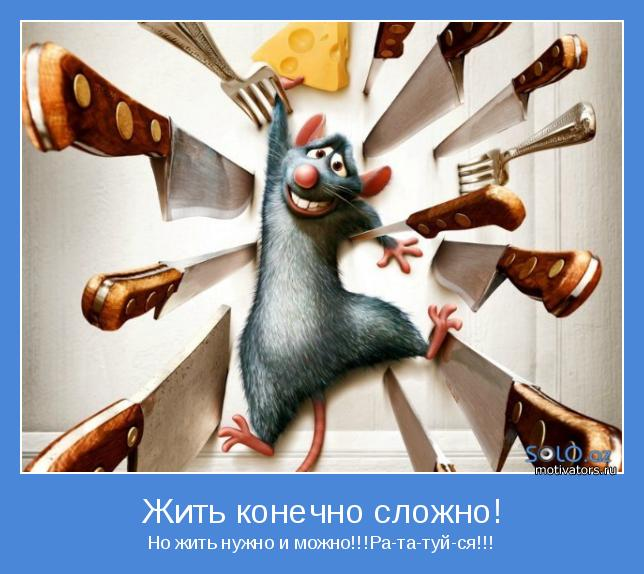 Но жить нужно и можно!!!Ра-та-туй-ся!!!