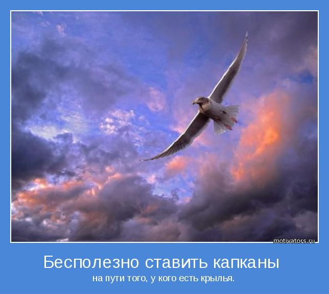 на пути того, у кого есть крылья.
