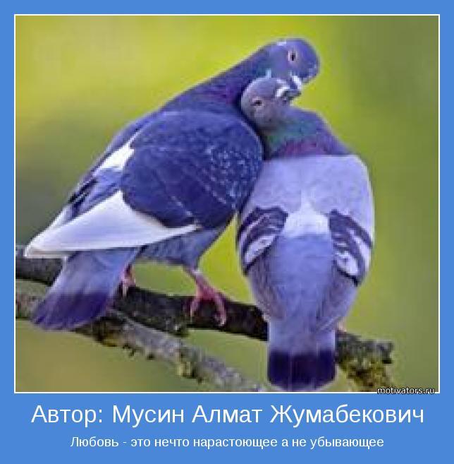 Любовь - это нечто нарастоющее а не убывающее