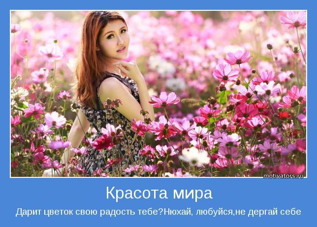 Дарит цветок свою радость тебе?Нюхай, любуйся,не дергай себе
