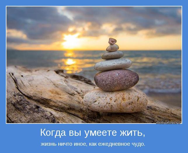 жизнь ничто иное, как ежедневное чудо.