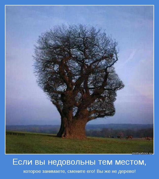 которое занимаете, смените его! Вы же не дерево!