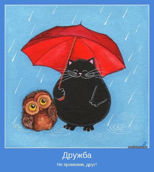 Не промокни, друг!