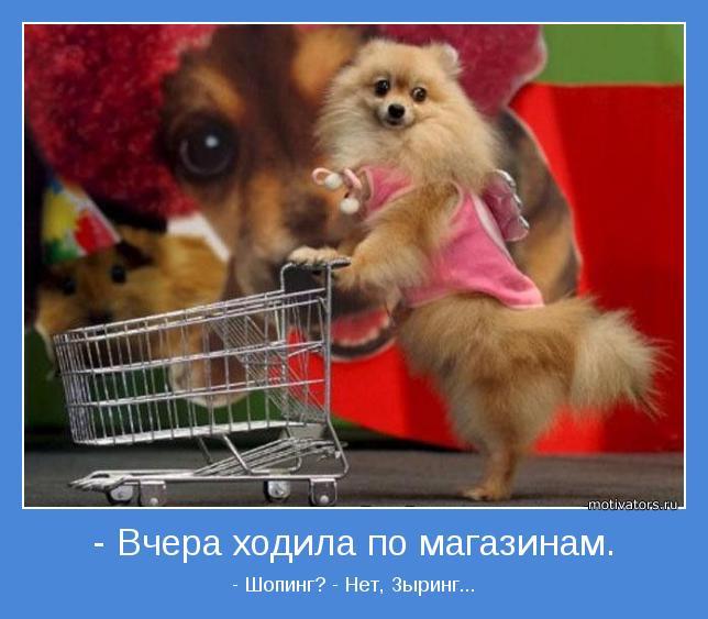 http://motivators.ru/sites/default/files/imagecache/main-motivator/motivator-9593.jpg
