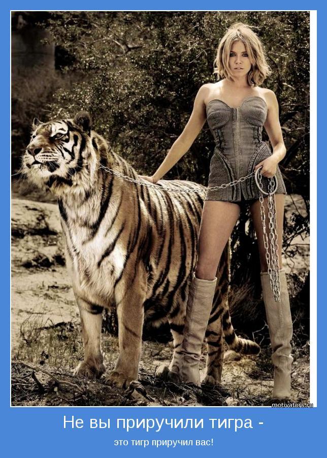 это тигр приручил вас!