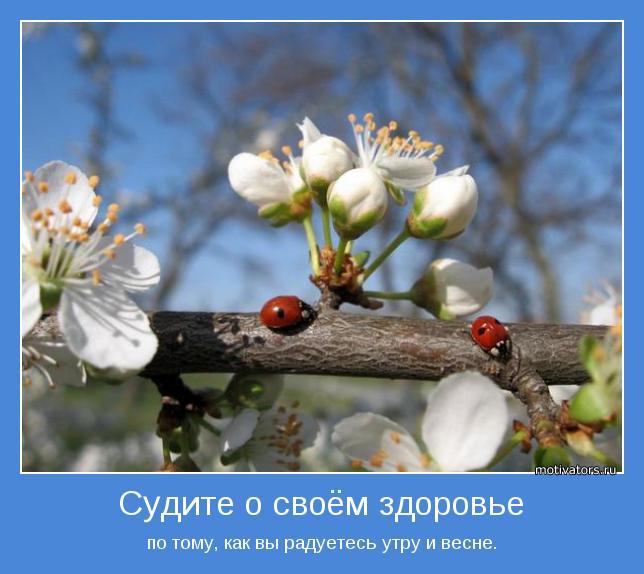 по тому, как вы радуетесь утру и весне.