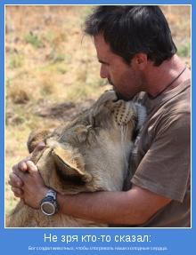 Бог создал животных, чтобы отогревать наши холодные сердца.