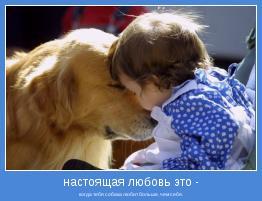когда тебя собака любит больше, чем себя.
