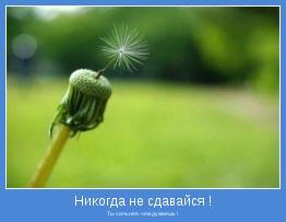Ты сильнее, чем думаешь !