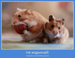 Поделись вкусняшкой с другом!