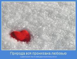 и даже бывает так,что зима дарит валентинку весне