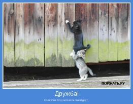 Счастлив тот, у кого есть такой друг.