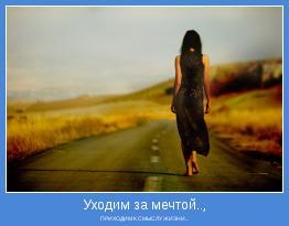 ПРИХОДИМ К СМЫСЛУ ЖИЗНИ...