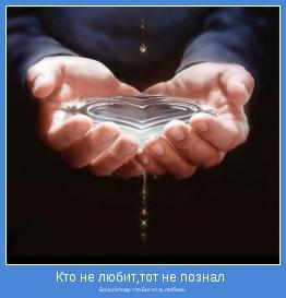 Бога,потому что Бог есть любовь