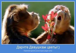 Приятное делать,за вcегда в радость!!:))