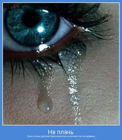 Твои слезы дороже бриллиантов, и они мне не по карману