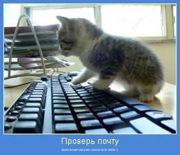 твоя кошечка уже написала тебе :)