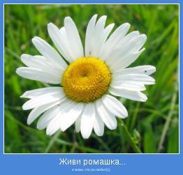 я знаю, что он любит)))