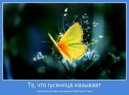 концом света, Мастер назовет бабочкой. Р. Бах