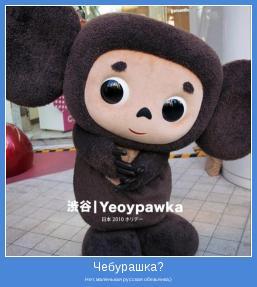 Нет, маленькая русская обезьянка;)