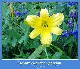 Р.У. Эмерсон