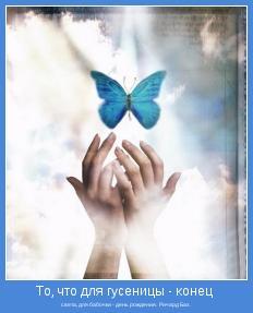 света, для бабочки - день рождения.  Ричард Бах.