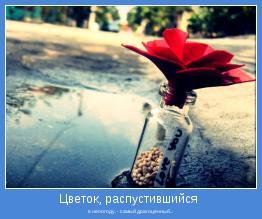 в непогоду, - самый драгоценный...