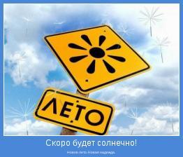 Новое лето. Новая надежда.