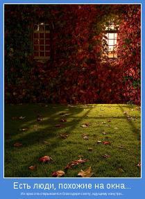 Их красота открывается благодаря свету, идущему изнутри...