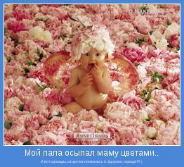 И вот однажды, из цветов появилась я. Здорово, правда?!! ;)