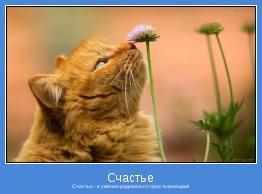 Счастье - в умении радоваться простым вещам!