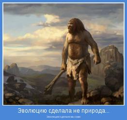 Эволюцию сделали мы сами