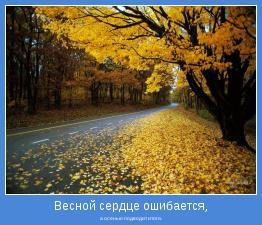 а осенью подводит итоги.