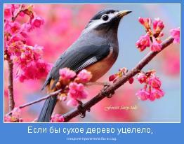 птица не прилетела бы в сад.