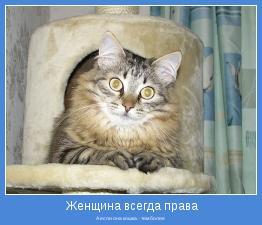 А если она кошка - тем более