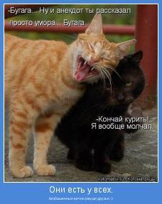 Безбашенные вечно ржуще друзья. :)