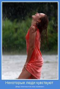Дождь. Некоторые же лишь промокают.