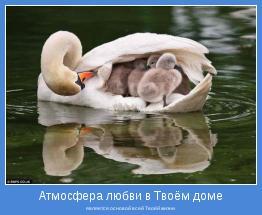 является основой всей Твоёй жизни