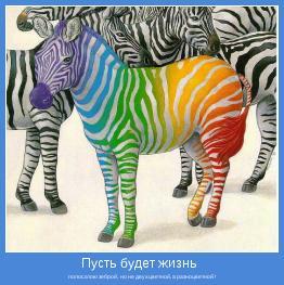 полосатою зеброй,  но не двухцветной, а разноцветной !