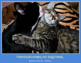 ВЕЛИКОЕ ЧУВСТВО - ЛЮБОВЬ...
