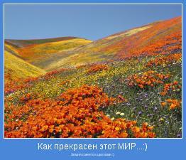 Земля смеется цветами :)
