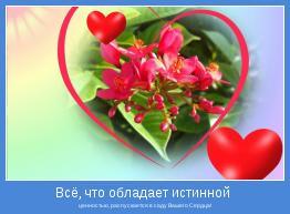 ценностью, распускается в саду Вашего Сердца!